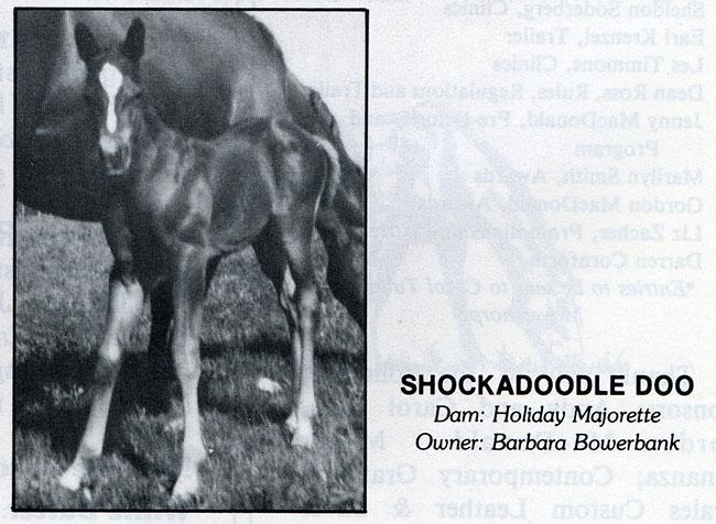 ShockadoodleDoo