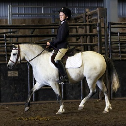 Welsh Mountain Pony mare Silverpine Jubilee (Menai Step-On x Cats Enuff by Tanglewood Cats Jupiter) with rider Becca. Photo: Michelle Walerius Photography.